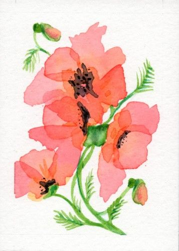 August birth flower i want the august birth flower gladiolas for a poppy birth flower for august original watercolor floral aceo aceo on artfire mightylinksfo