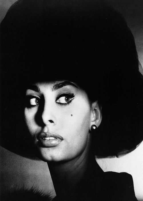 Sophia Loren by Irving Penn.: 1960 S Fashion, Sophie Loren, Movies Stars, Loren 1960, Le Fashion, Penn Sophie, Pictures, Irving Penn, Fashion Photography
