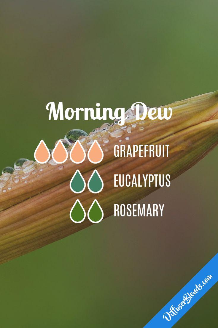 diffuser blend - grapefruit eucalyptus rosemary