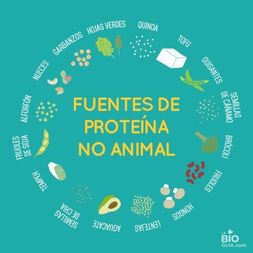 La Bioguia vegan protein