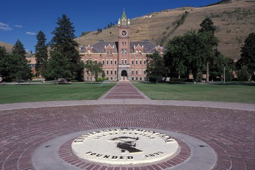 iphone to pc transfer 83 best of montana griz images on 15495