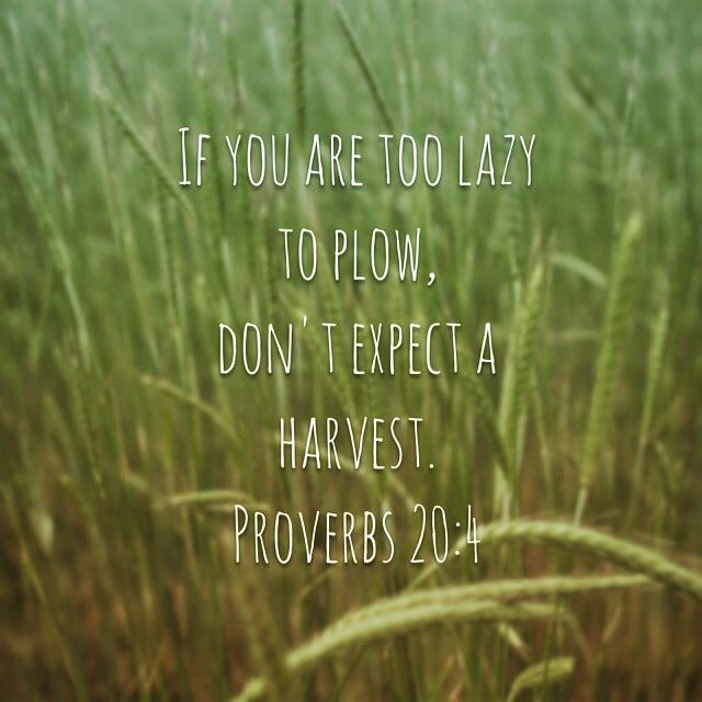 If you are too lazy to plow, don't expect a harvest. Proverbs 20:4