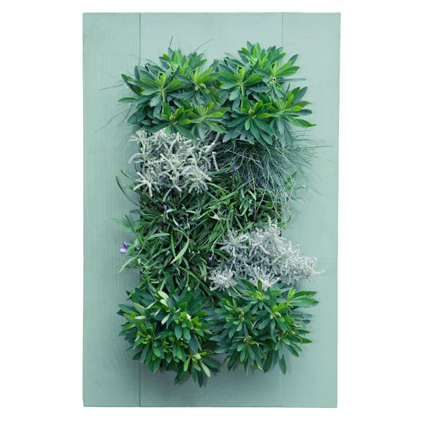 Create Your Own Modern Wall Garden With The Easy To Assembly Grovert Wall  Planter By Bright