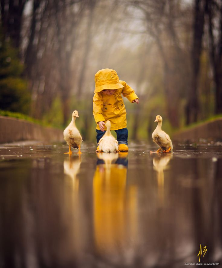 Photograph One Yellow Spring by Jake Olson Studios on 500px