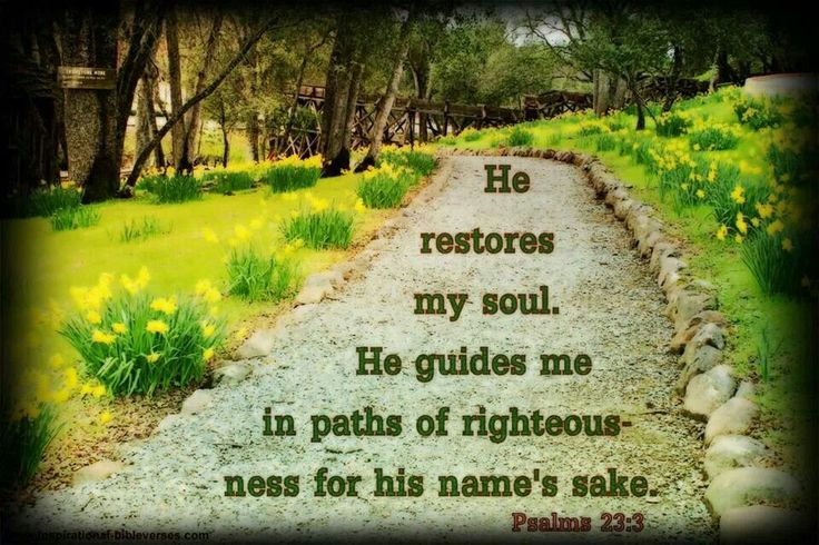 Bible Verse Quotes And Stuff Pinterest Beautiful