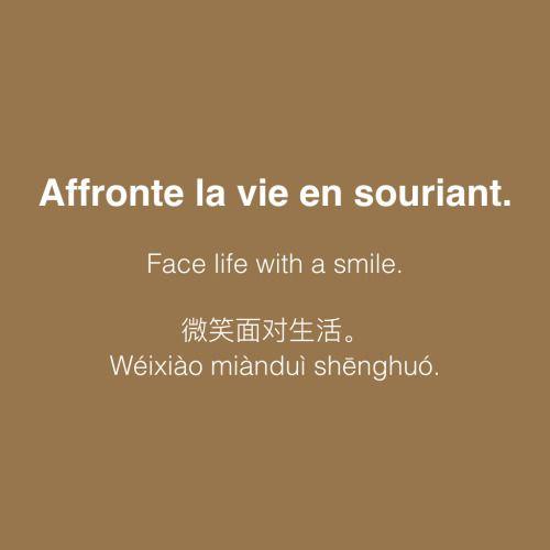 Affronte la vie en souriant. • /afʁɔ̃t la vi ɑ̃ suʁjɑ̃/ • Face life with a smile. • 微笑面对生活 • Wéixiào miànduì shēnghuó.