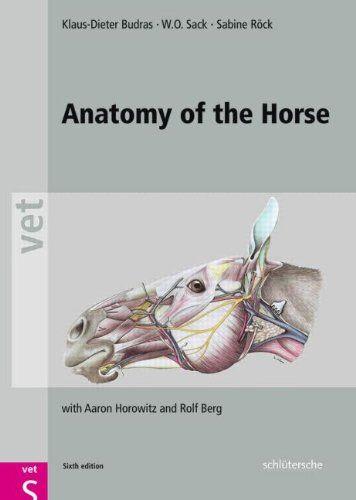 Anatomy and Physiology of Farm Animals 7th Edition PDF | Anatomy ...