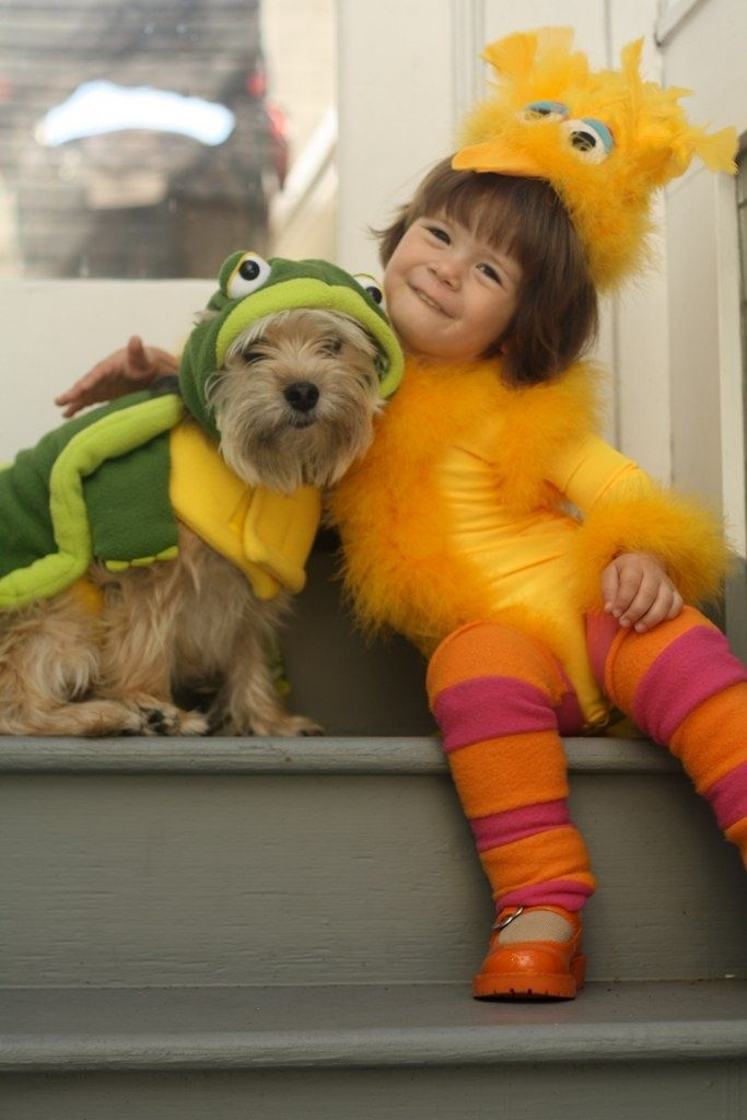sesame street http://blog.kidnimble.com/kids-and-dogs-in-matching-halloween-costumes/