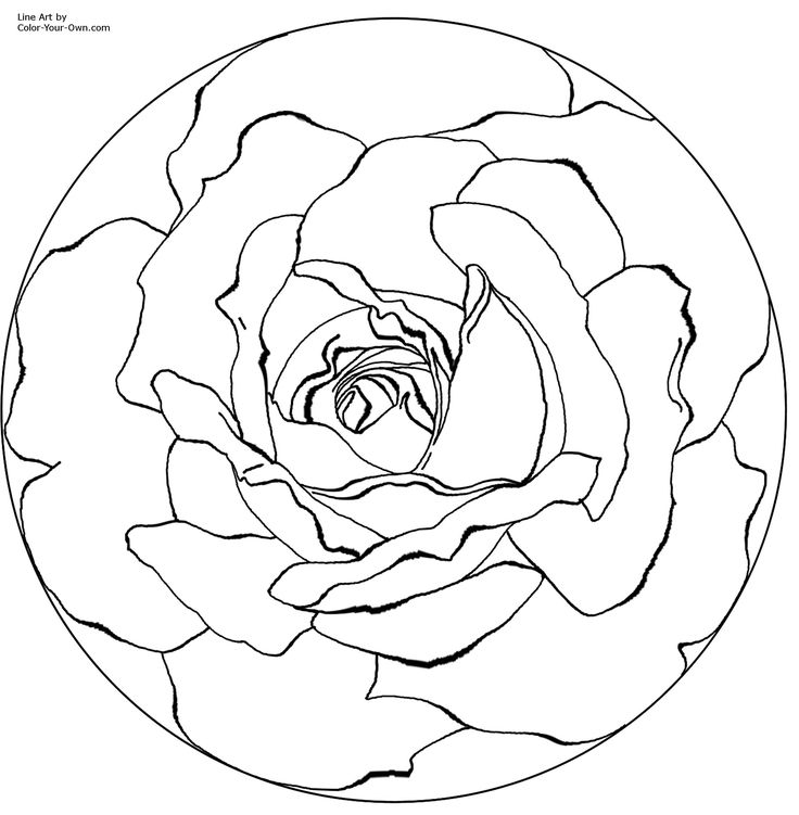 mandala coloring pages printable | mandala rose Colouring Pages
