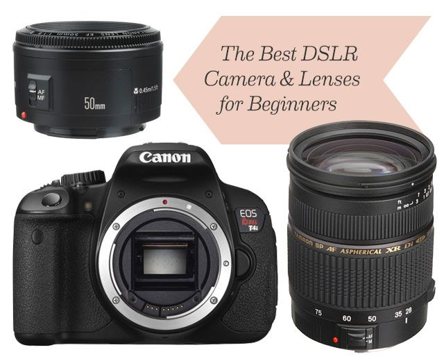 The Best DSLR Canon Camera and Lenses for Beginners. This is a wonderful easy to understand breakdown. I wholeheartedly agree with Nicole get a nifty 50 you won't be sorry!