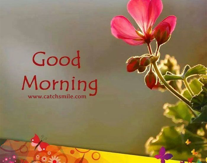 Best 20 Romantic Good Morning Quotes Ideas On Pinterest: 25+ Best Ideas About Happy Marriage Anniversary Sms On