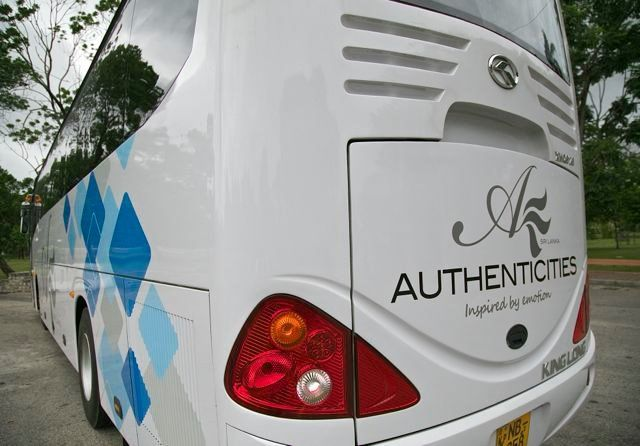 our coach branding from a different angle