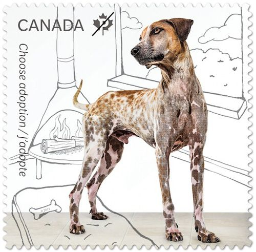 Adopt a Pet Postage Stamps from Canada Post