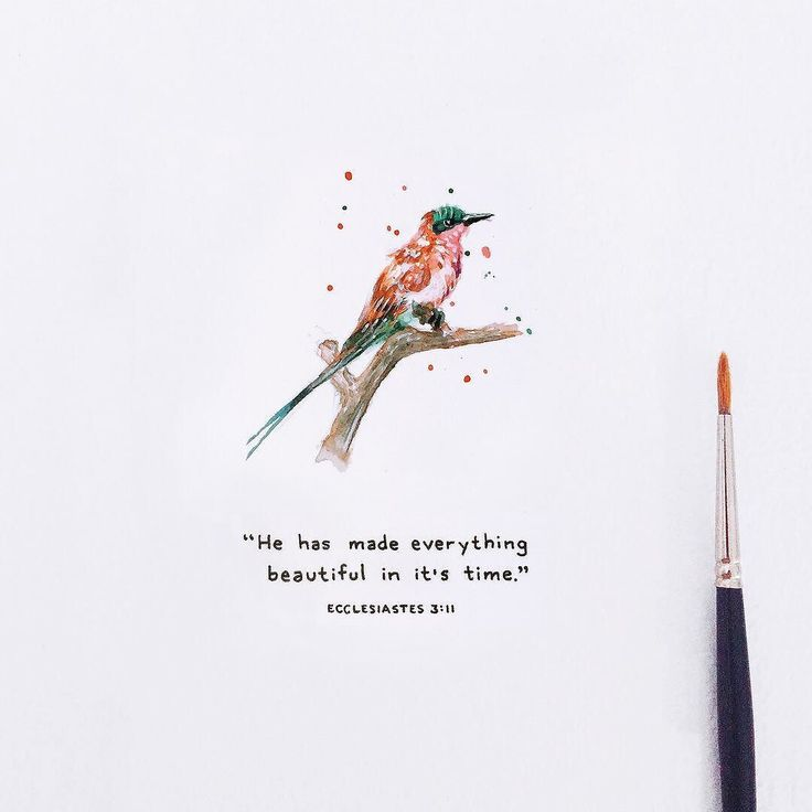"""""""He has made everything beautiful in it's time."""" Ecclesiastes 3:11 . Does anybody know what type of bird this is? Laura painted it but we don't know what it is  no idea.. but we really felt it matched this verse  It's a real type of bird though.. anybody have any idea what kind?  . Thanks also to @sarahseesp for the verse recommendation! We hope you're ok with the image we paired it with"""