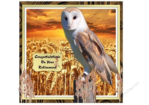 Barn Owl at Dusk Fathers DayRetirementBirthday by Jan Mason This 5 sheet kit would fit many occasions. The kit hasMain backgroundDecoupage3 matching inserts 1 with birthday verse 1 with retirement verse and one blank for your own useTags for Best Wishes Happy Fathers Day Happy Birthday Congratulations On Your Retirement.