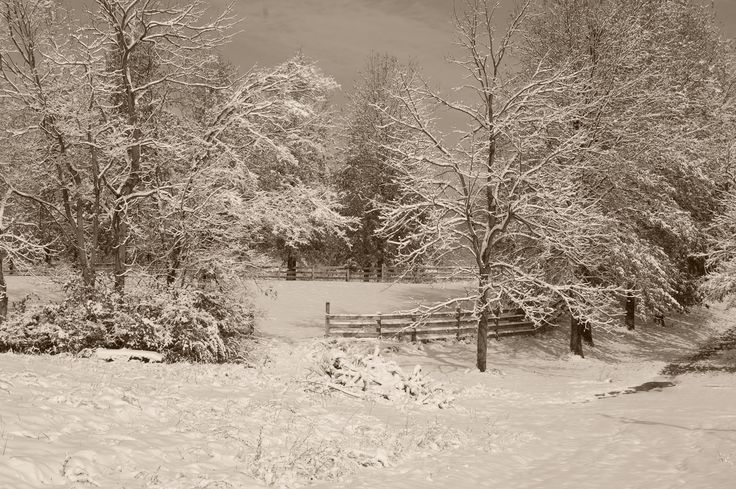11-17-14  Nikon D-40  light sepia tone.  I see this view every day when I step out my door.  It is beautiful no mater what season. This happens to be an early snowfall.  TK