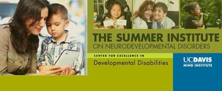 The Summer Institute on Neurodevelopmental Disorders