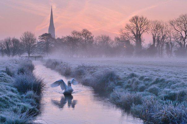 Раннее утро в графстве Уилтшир, Великобритания