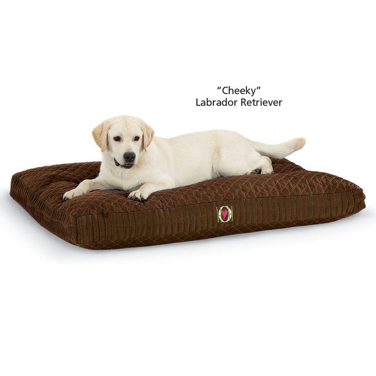 Tuffut Lu Chew Proof Crate Pad Dog Beds Gates Crates