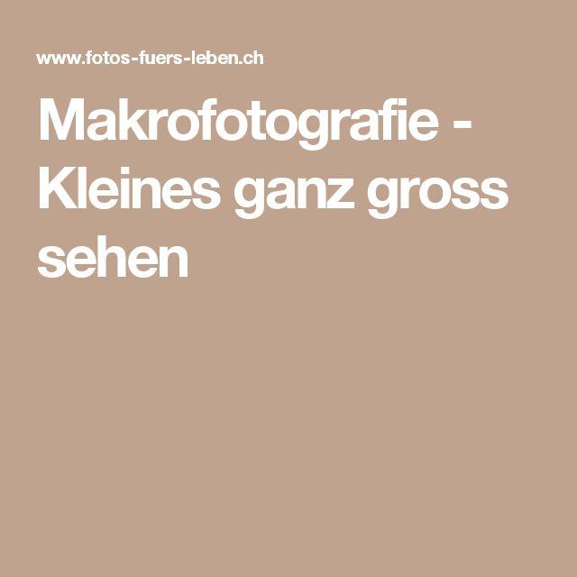 Makrofotografie - Kleines ganz gross sehen