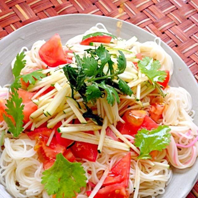 あるもので何とか(-。-;きゅうりが良いと言うので、ズッキーニで誤魔化しw 元気、食欲あるけどお熱がまだあるので、今日もぼぉ〜とかな - 55件のもぐもぐ - Asian Salad Wheat Noodleアジアンサラダそうめん by Ami