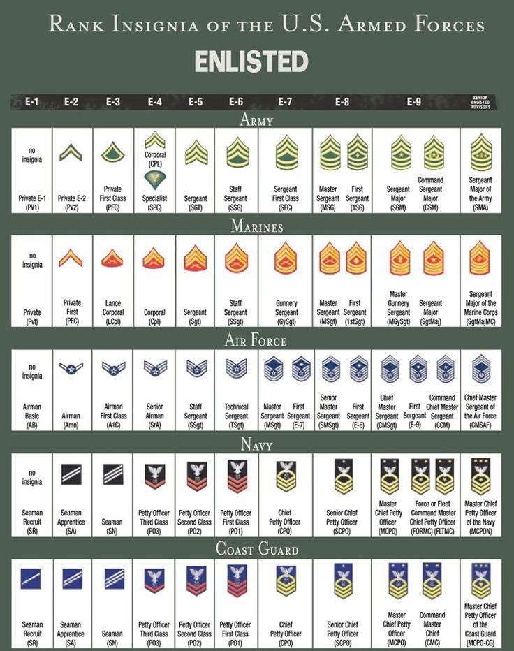 13 best military rank structure charts images on pinterest