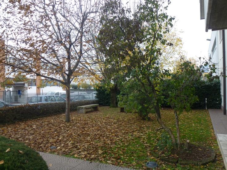 Hyphen-Land Autumn
