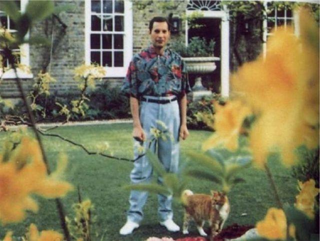 Fred Mercury - Última foto do músico antes de morrer de pneumonia resultante da AIDS.