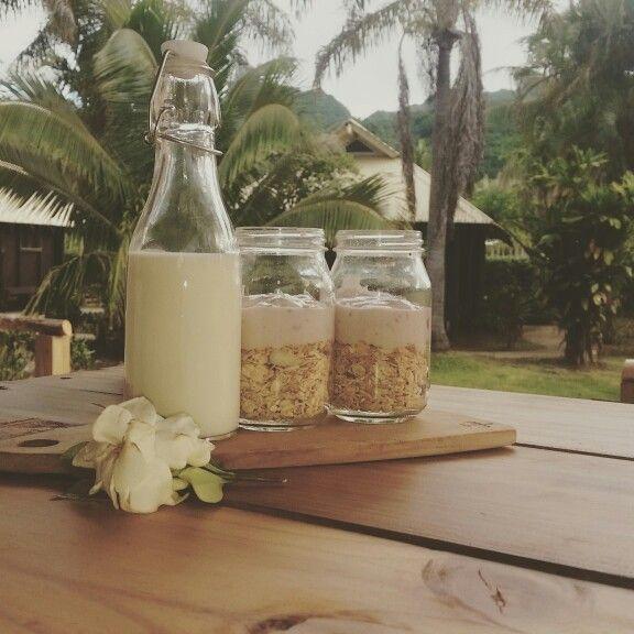 Breakfast is served...     Glamping, Rarotonga, Cook Islands, Eco