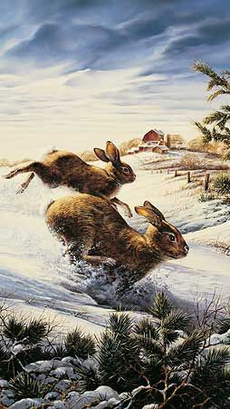 Hightailing-Cottontail Rabbits by Terry Redlin : Wild Wings
