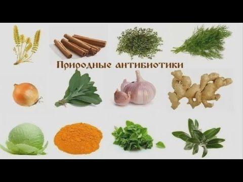 Природные  антибиотиков   Витамин в тарелке