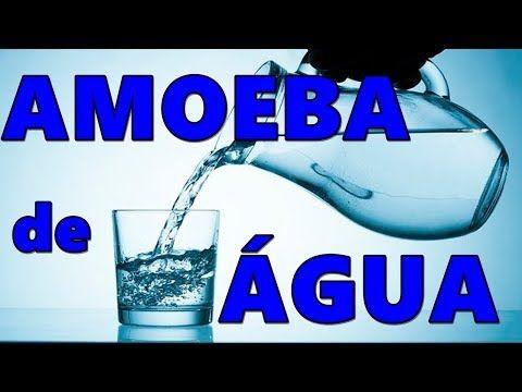 AMOEBA SEM COLA 38b1ce82abd7f