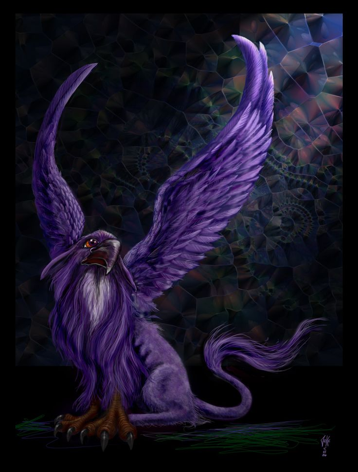 67 best images about rare mythical creatures on pinterest for The griffin