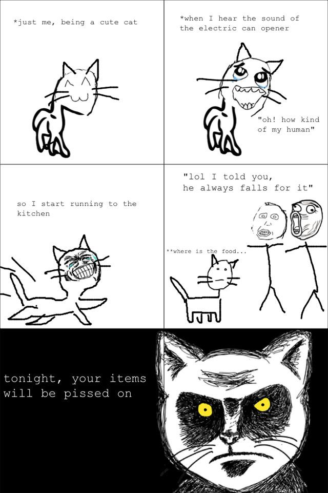 Funny Rage Comics | rage comics                                                                                                                                                                                 More