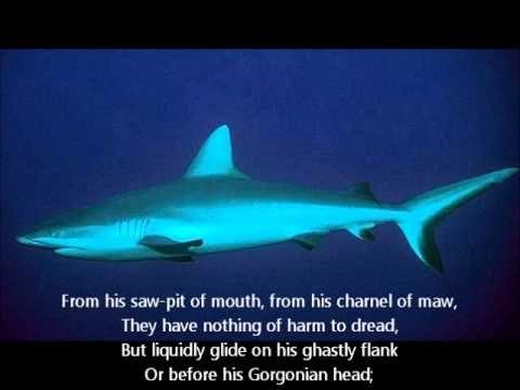 PRATT AND MELVILLE SHARK POEMS