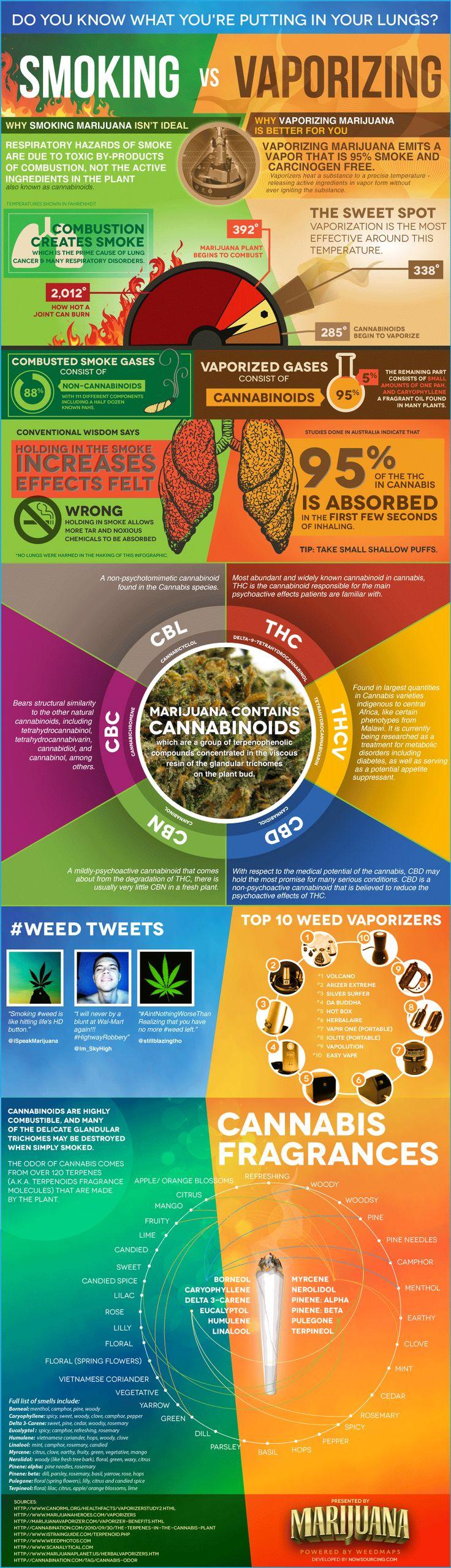 Smoking marijuana vs vaporizing marijuana infographic