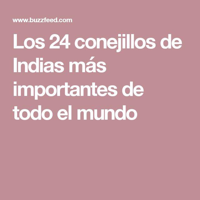 Los 24 conejillos de Indias más importantes de todo el mundo