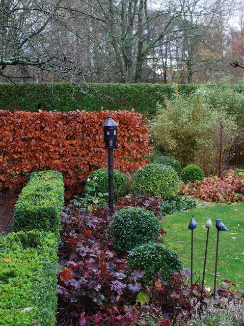 Novemberdag i trädgården
