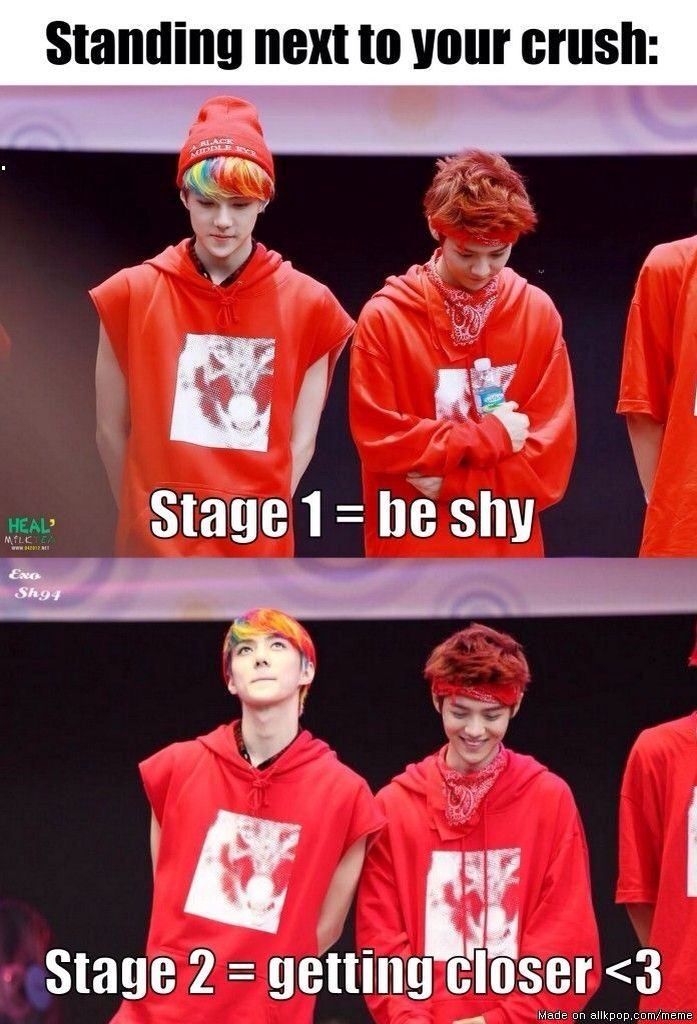 Sehun and luhan ^~^ But why do they both look like this applies to them.