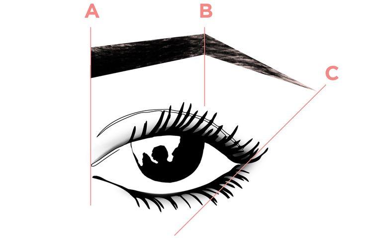 Existen tres puntos claves a la hora de diseñar nuestras cejas: PUNTO A: traza…  #Nutrición y #Salud YG > nutricionysaludyg.com