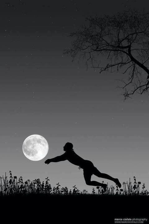 Moon beach volleyball                                                                                                                                                                                 Más