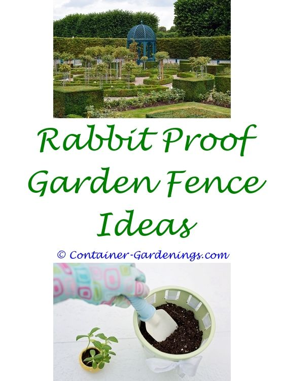 Starting A Garden Garden ideas, Tropical garden design and