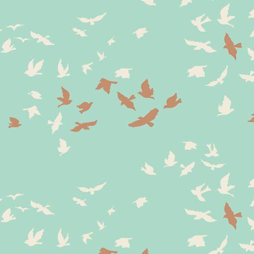ART GALLERY - Aves shater shine