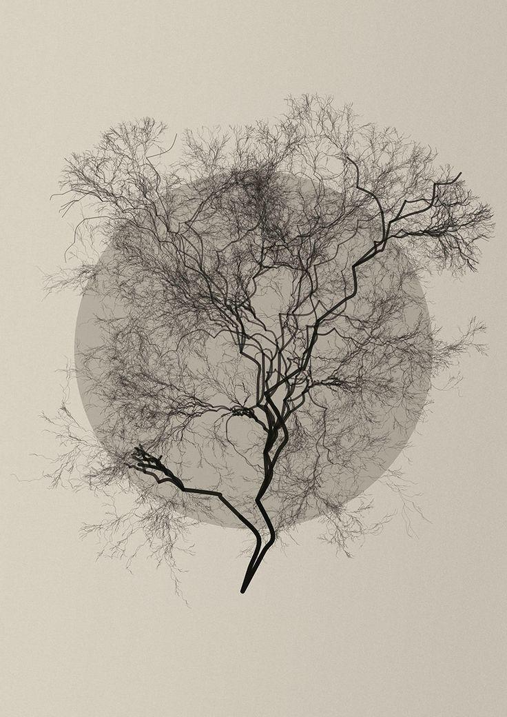 Recursion tree by Diana Lange