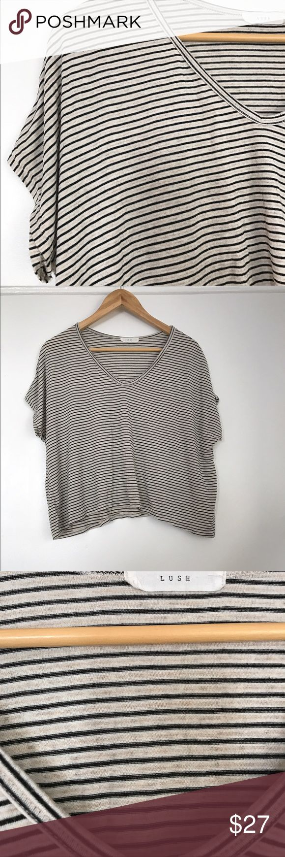 LUSH striped tee This is a super cozy, lightweight, swishy t-shirt with a slightly cropped hem by LUSH. It is striped in thin neutral stripes, and has an open, loose v-neck. This top is women's size medium. Lush Tops Tees - Short Sleeve