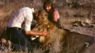 A Lion Called Christian (Full Documentary), via YouTube.