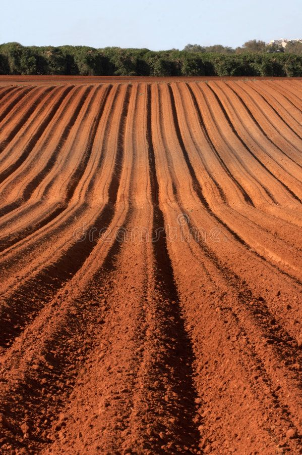 Plowed Field In Early Summer Aff Field Plowed Summer Early Ad Background Stock Images Field