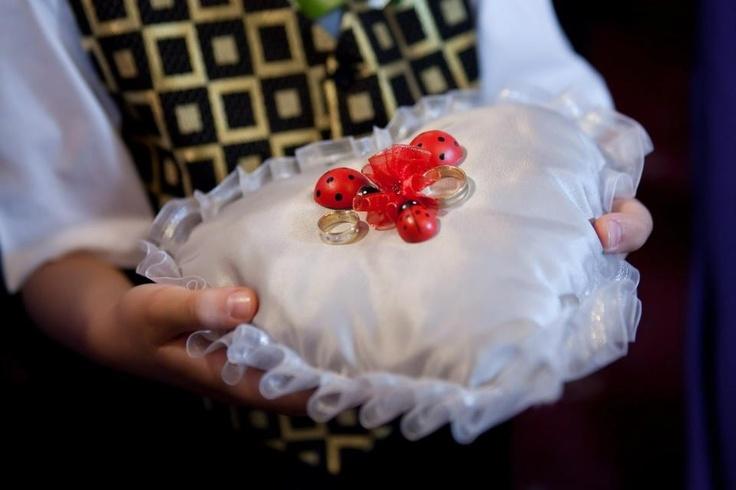 Ladybug rings