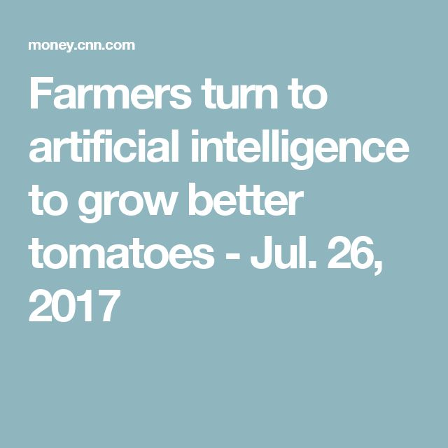 Farmers turn to artificial intelligence to grow better tomatoes - Jul. 26, 2017