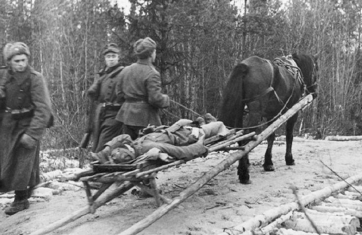 Hevoset sodassa